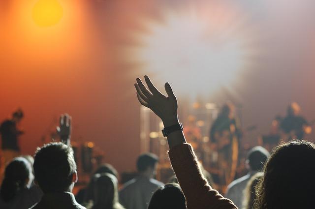 ライブの観客が手を挙げている