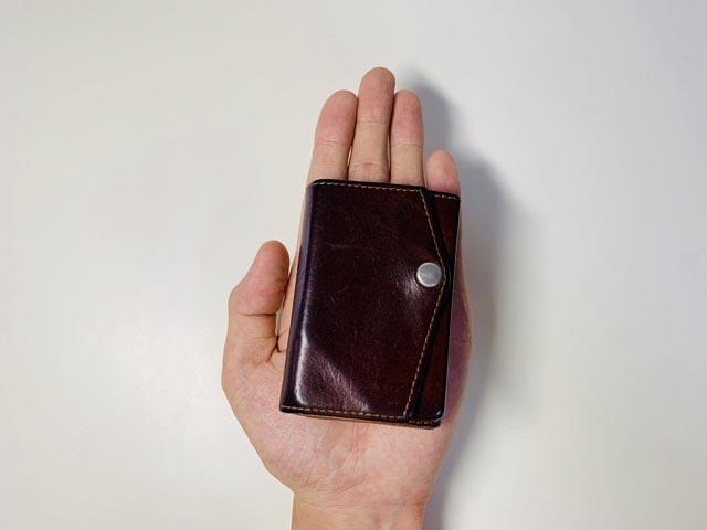 アブラサスの小さい財布を手に乗せている